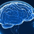 Mengenal Meningitis, Radang Selaput Otak yang Berakibat Fatal