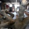 Fosil Seorang Ibu Menggendong Bayinya Buat Arkeolog Takjub