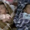 Tim DVI Polda Sulselbar Ambil Sampel DNA Bayi Kembar yang Tertukar