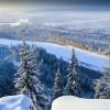 Seorang balita bertahan hidup di dalam hutan Siberia selama tiga hari
