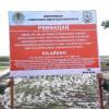KLHK Segel Lokasi Pembuangan Limbah Medis di Cirebon