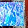 Bareng Megawati, Jokowi Hadiri Perayaan Imlek Nasional 2019