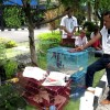 Polisi Gagalkan Penyelundupan Burung Dilindungi dari Papua